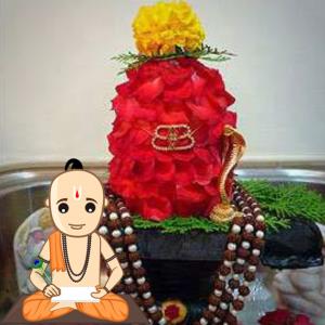 Pran Prathistha Puja