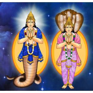 Rahu and Ketu Graha Puja Mantra Japa and  Yagna
