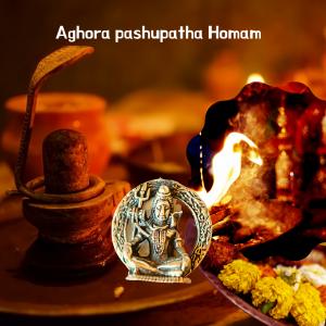 Aghora pashupatha Homam | Aghorastra Homam