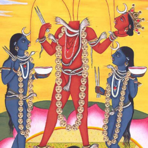 Chinnamasta Puja and Yagna