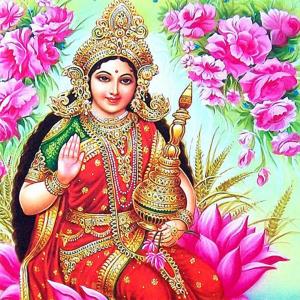 Kamladevi Puja and Yagna