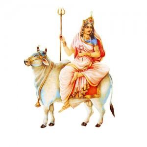 Shailputri Maha Puja