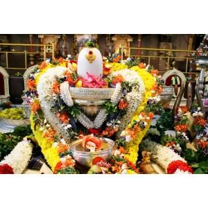 Ati Rudra Maha Yajna