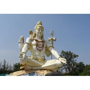 Laghu Rudra Siddh Pujan and Havan