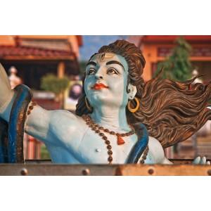 Maha Rudram Siddh Pujan and Havan