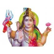 Ardhnarishwar Puja and Yajna