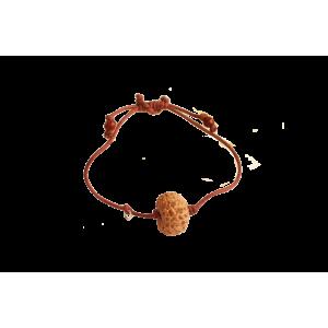 13 Mukhi Java/Indonesia Bracelet in Thread Small 15mm - 16mm