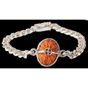 14 Mukhi Rudraksha Java/Indonesia  Silver Bracelet in Silver Chain 15mm - 18mm