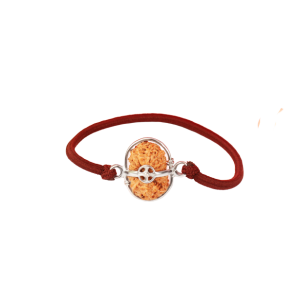 15 Mukhi Rudraksha Java/Indonesia Silver Capped Bracelet in Thread 14mm-17mm