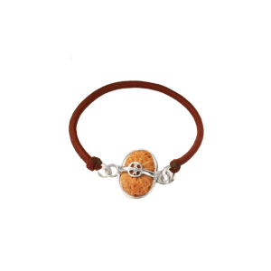 16 Mukhi Rudraksha Indonesia/Java  Silver Capped Bracelet in Thread Small 14mm-17mm