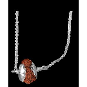 17 Mukhi Rudrasha Java/Indonesia Pendant Silver Chain Small 14mm
