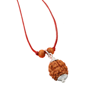 4 Mukhi Rudraksha in Pendant with Silver Capping Small from java/Indonesia - 10mm