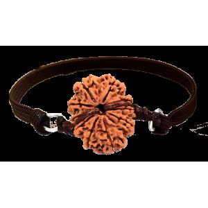 10 Mukhi Rudraksha Nepal Bracelet in Thread Small  20mm