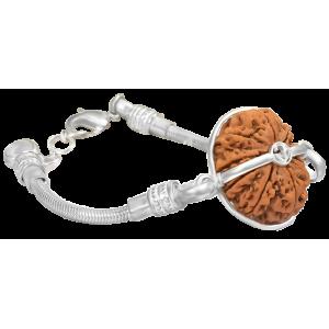 11 Mukhi Rudraksha Nepal  Silver Bracelet in Snake Chain 22mm