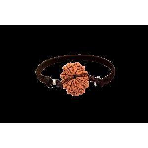 13 Mukhi Rudraksha Nepal Bracelet in Thread Small 20mm-24mm