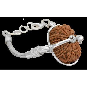 15 Mukhi Rudraksha Nepal Silver Bracelet in Snake Chain 24mm-27mm