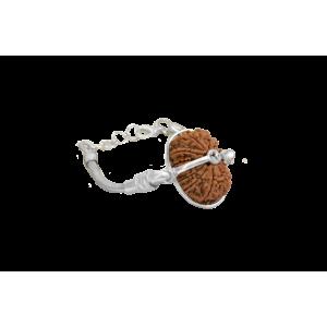 16 Mukhi Rudraksha Nepal  Silver Bracelet in Silver Snake Chain Small 24mm