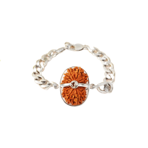 18 Mukhi Rudraksha Nepal  Silver Bracelet in Silver Chain 28mm