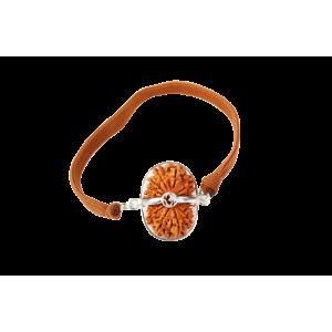 18 Mukhi Rudraksha Java/Indonesia  Silver Capped Bracelet in Thread 13mm