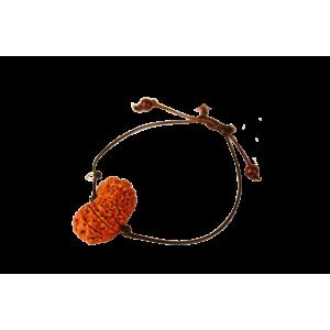 18 Mukhi Rudraksha Nepal  Bracelet in Thread 28mm