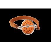 3 Mukhi Rudraksha Nepal Bracelet Large - 20mm