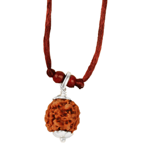 3 mukhi rudraksha Nepal Pendant capped in Silver with Thread - 15mm