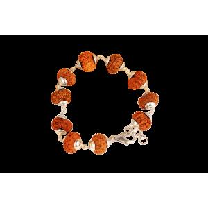 11 Mukhi Rudraksha bracelet - Java in Silver Capping