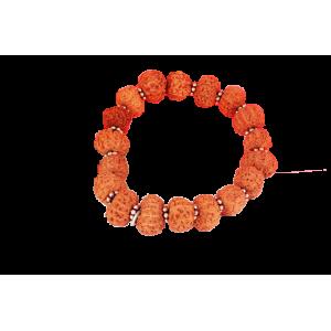 11 Mukhi Rudraksha bracelet - Java in Silver Spacer