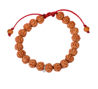 Rare 5 Mukhi Rudraksha Semi Chikna Bracelet in Silk Thread-10mm
