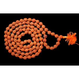 Rudraksha Mala - Chikna Beads
