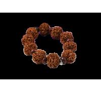 5 Mukhi Nepal Rudraksha Beads Bracelet - II