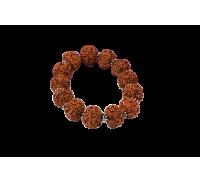 5 Mukhi Nepal Rudraksha Beads Bracelet - V