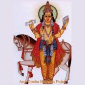 Any Dosha Nivaran pujas