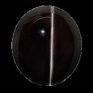 Black Cats Eye - 8.40 carats